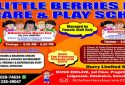 Little berries day care and play school Lal Ganesh, Guwahati